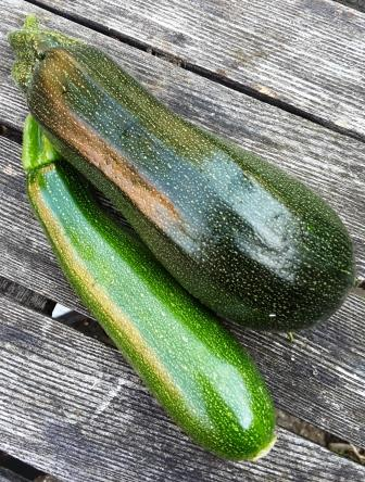 courgettes4