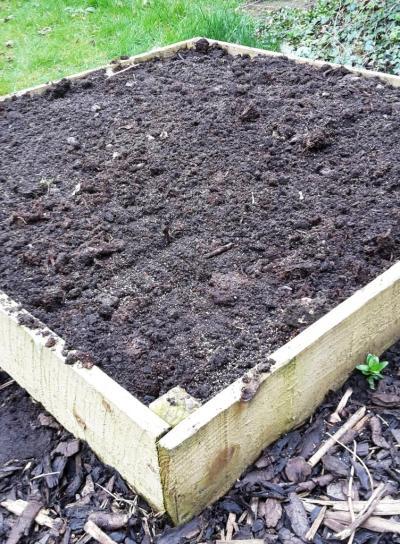 digging5